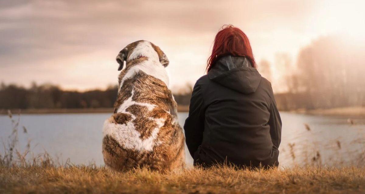 Mercoledì era la Giornata del Cane e non potevamo dimenticarci di celebrarla con un bell'articolo