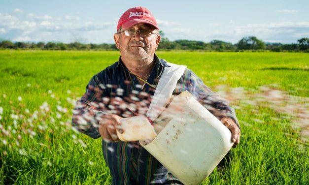 Fai l'agricotore per hobby? In Liguria sei libero di spostarti