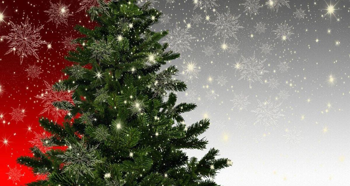 """""""A Natale regalate bellezza"""" con gli auguri di Patrizia Stefani, della Patty's Art Gallery"""