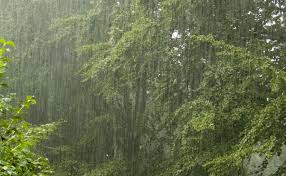 Updated 2017 Seasonal Rainfall Pattern (SRP) In Nigeria
