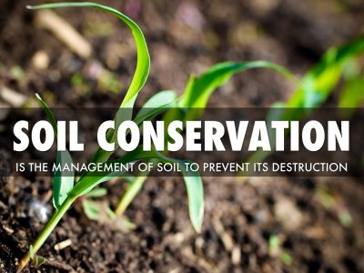 Steps to Conserve the Soil