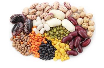 intro-legumes-photo2