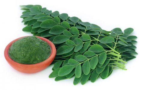 What Makes Moringa Good For You?