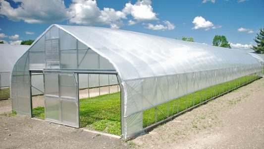 Exceeding Weather Limitations with Greenhouses