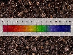 Effects of soil pH on plant growth?
