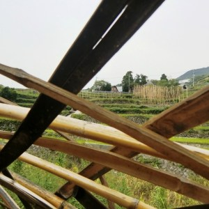 House of Shodoshima & Voices of the Disappeared People