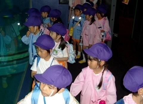 Écoliers à l'aquarium d'Osaka