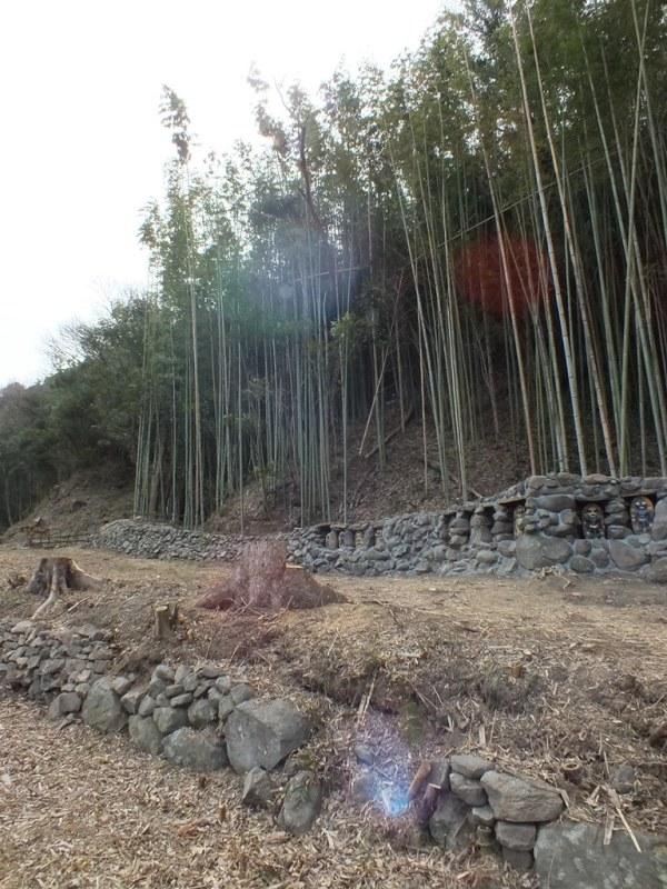 Shishigaki Island - 2