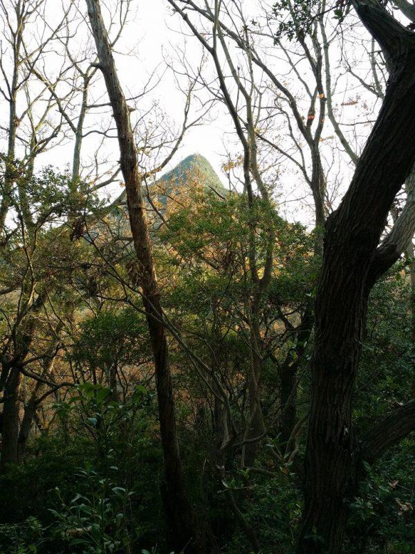 Pointe Nord de Yashima - 3