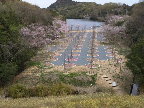 4 - Labyrinth of Cherry Blossoms - Tadao Ando
