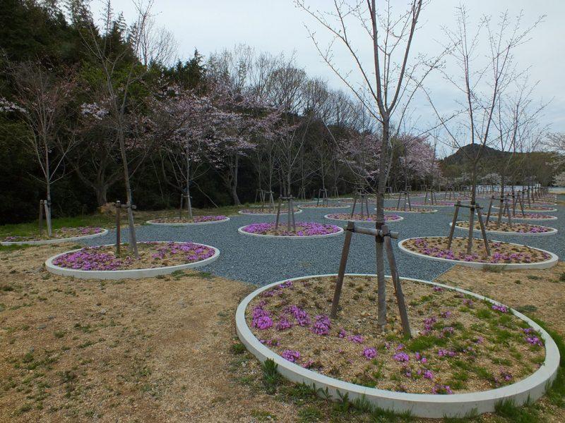 5 - Labyrinth of Cherry Blossoms - Tadao Ando