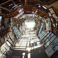 Distant Memory de Chiharu Shiota