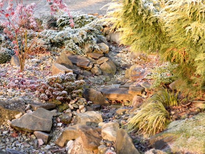 Sucha rzeka jesienią