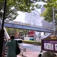 Harajuku Haps! 8/2/19