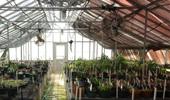 Boaler: A trip to Naples Botanical Garden  Ohio