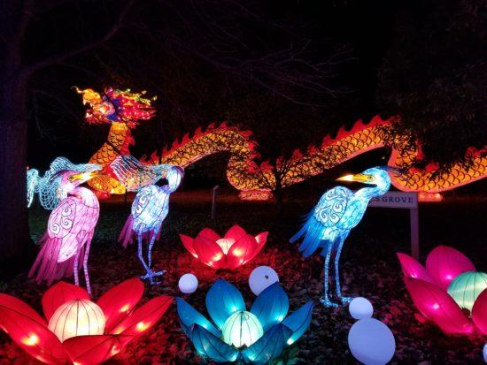 Columbus Zoo Zoo Lights