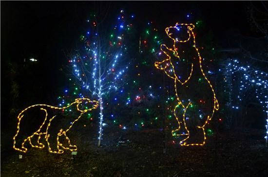 Akron Zoo Wild Lights