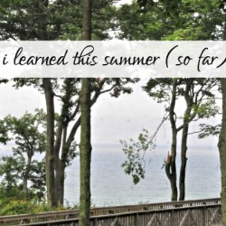 Lessons from the Summer