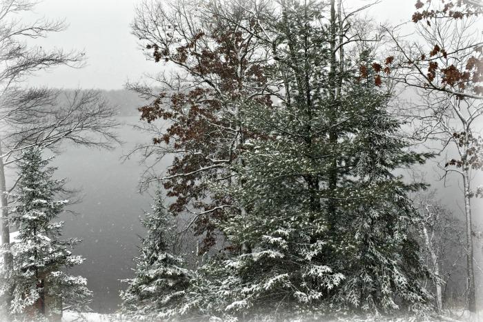 cabin-snow