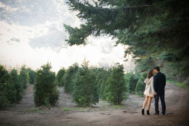 Christmas Tree Farm Anniversary Shoot | Britt Renee Photo | Oh Lovely Day