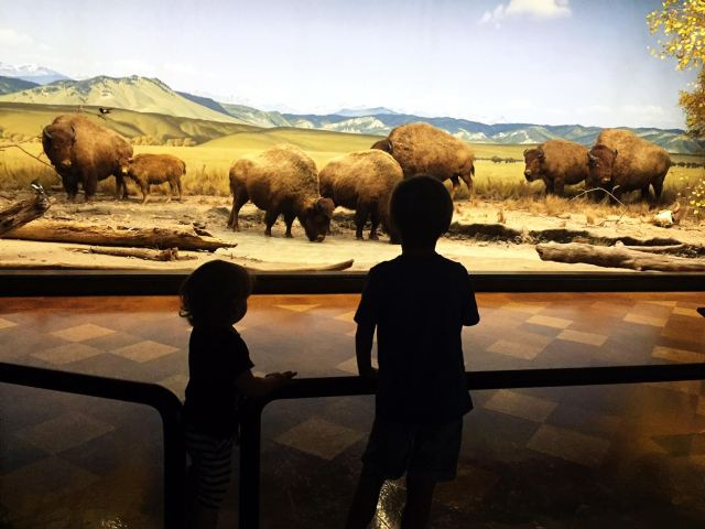 Oh Lovely Day's favorite family-friendly places in Los Angeles | where to take your kids in LA | ohlovelyday.com