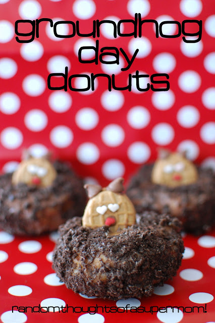 Groundhog day doughnut dessert