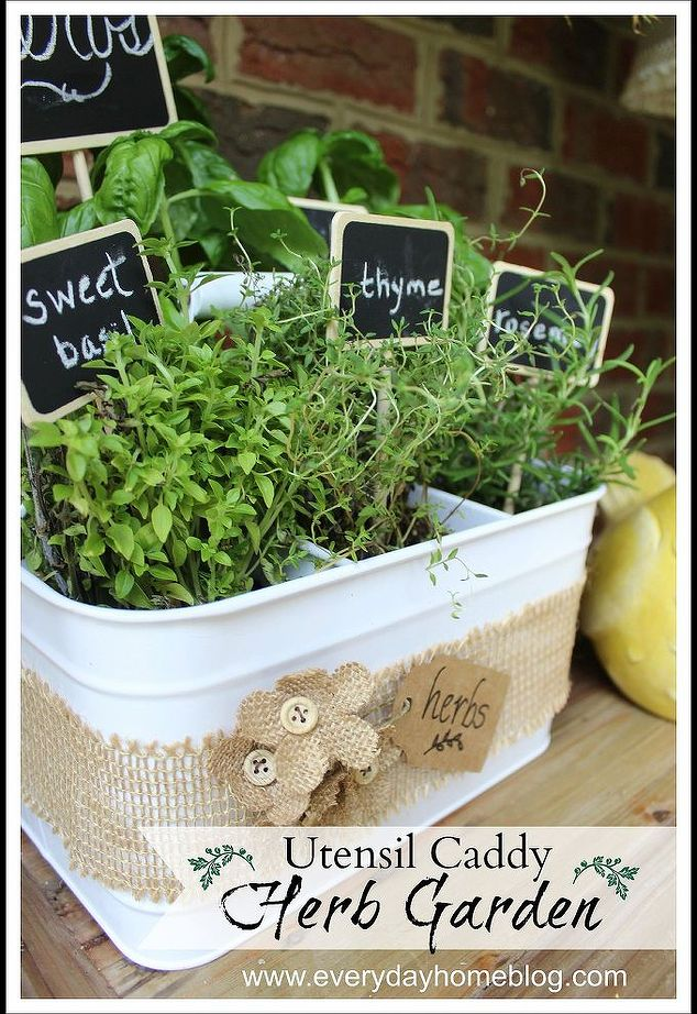 Goodwill Utensil Caddy turned into a Herb Garden