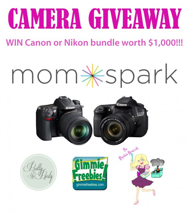 WIN A CANON OR NIKON DIGITAL CAMERA BUNDLE GIVEAWAY