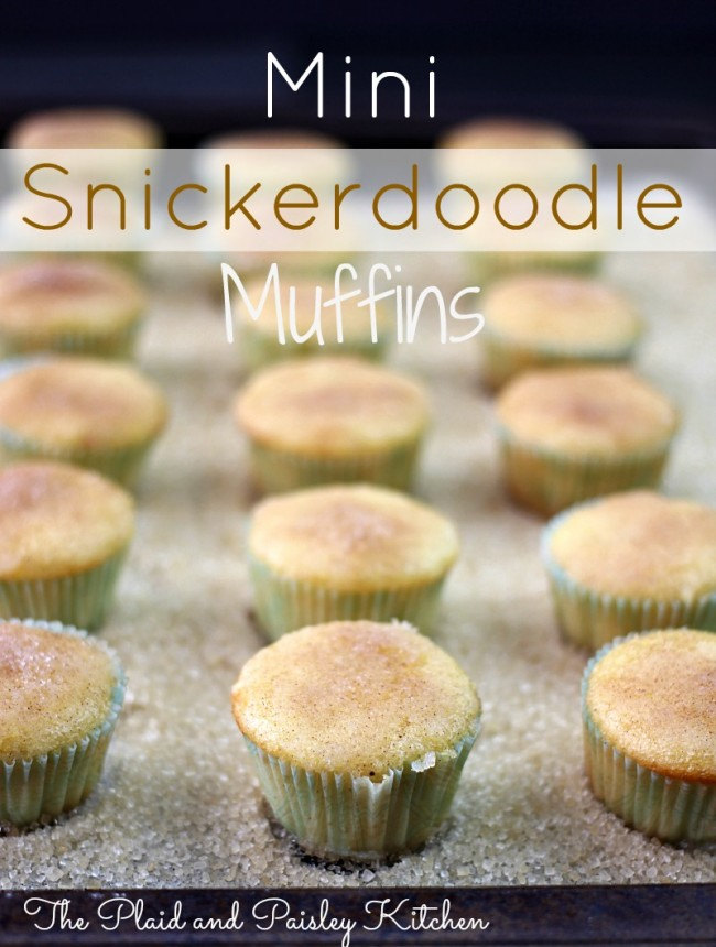 Mini-Snickerdoodle-Muffins-The-Plaid-and-Paisley-Kitchen