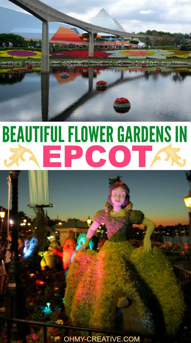 These Beautiful Flower Gardens In Epcot are on display for the Epcot Flower and Garden Festival each Spring | OHMY-CREATIVE.COM