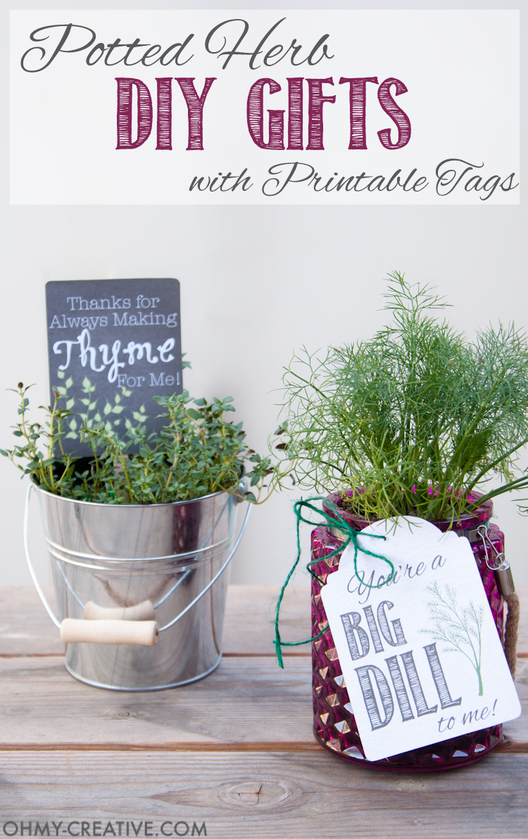 photo relating to Printable Tags for Gifts identify Potted Herb Do-it-yourself Items with Printable Tags - Oh My Innovative