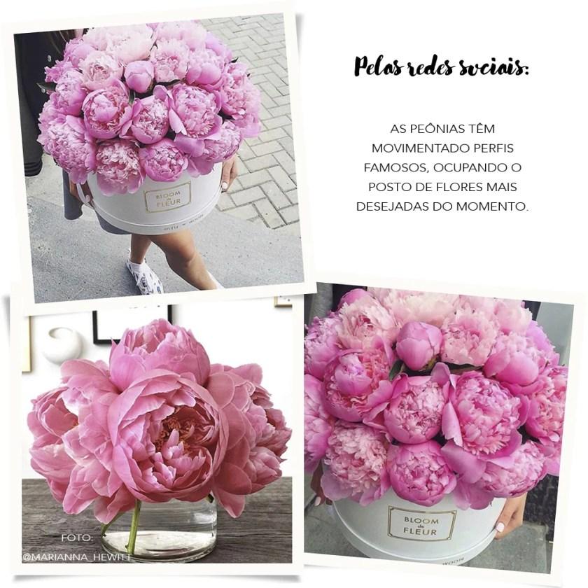 Peonias-Flores-do-Momento-Redes-Sociais
