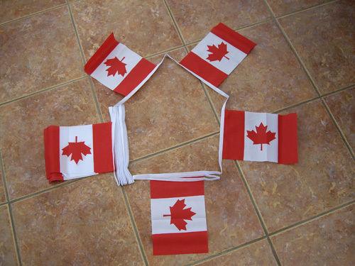 Canada Flag Bunting Printing