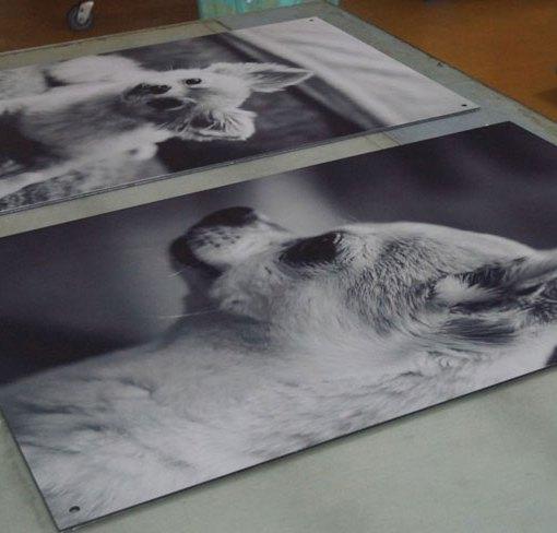 Custom-Print-on-Aluminum