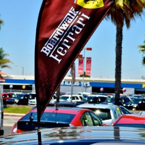 car flags feather