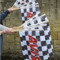 Hand Flag with wooden Sticks