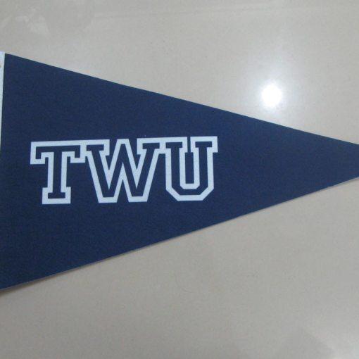 8 x 12 inch Felt Pennant Flag