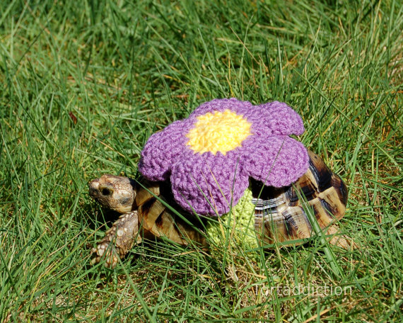 PATTERN for tortoise flower