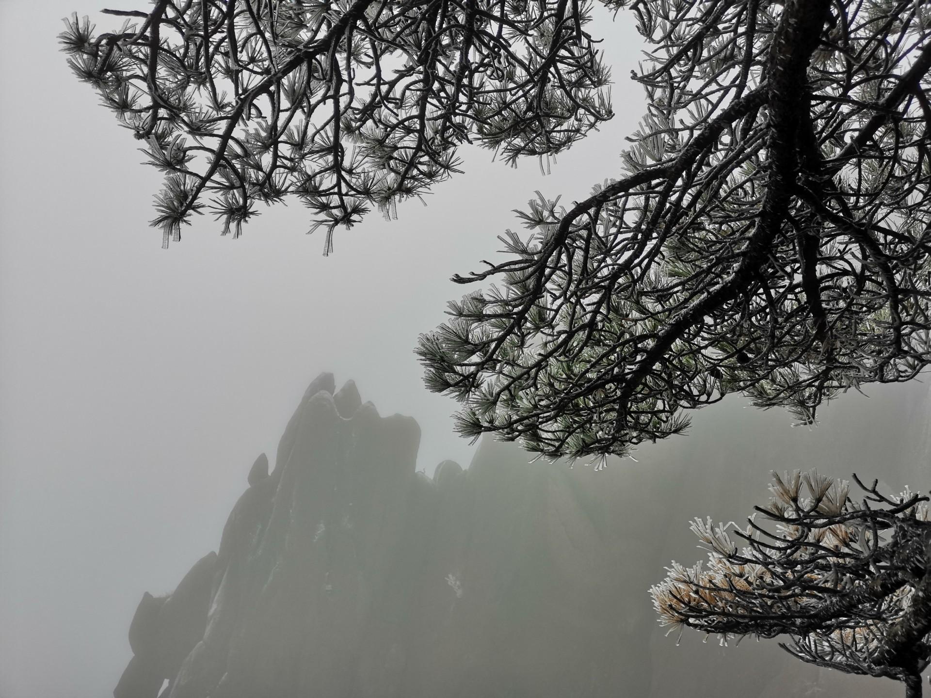 Wandern in Huangshan den gelben Bergen