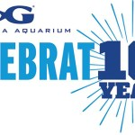 Celebrating Georgia Aquarium's 10th Anniversary