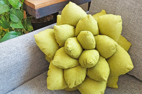 succulent pillow pattern