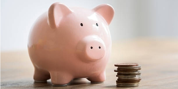 Ad hoc IT Support Services - piggy bank image