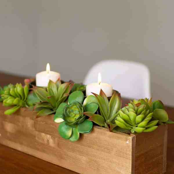 DIY // SUCCULENT CENTERPIECE