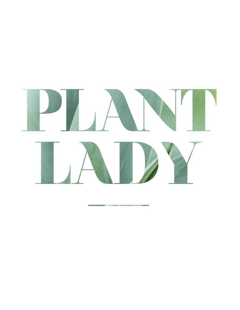 Oh So Lovely Blog shares two FREE plant lady printables for all you green thumbs out there! Download and print yours today!
