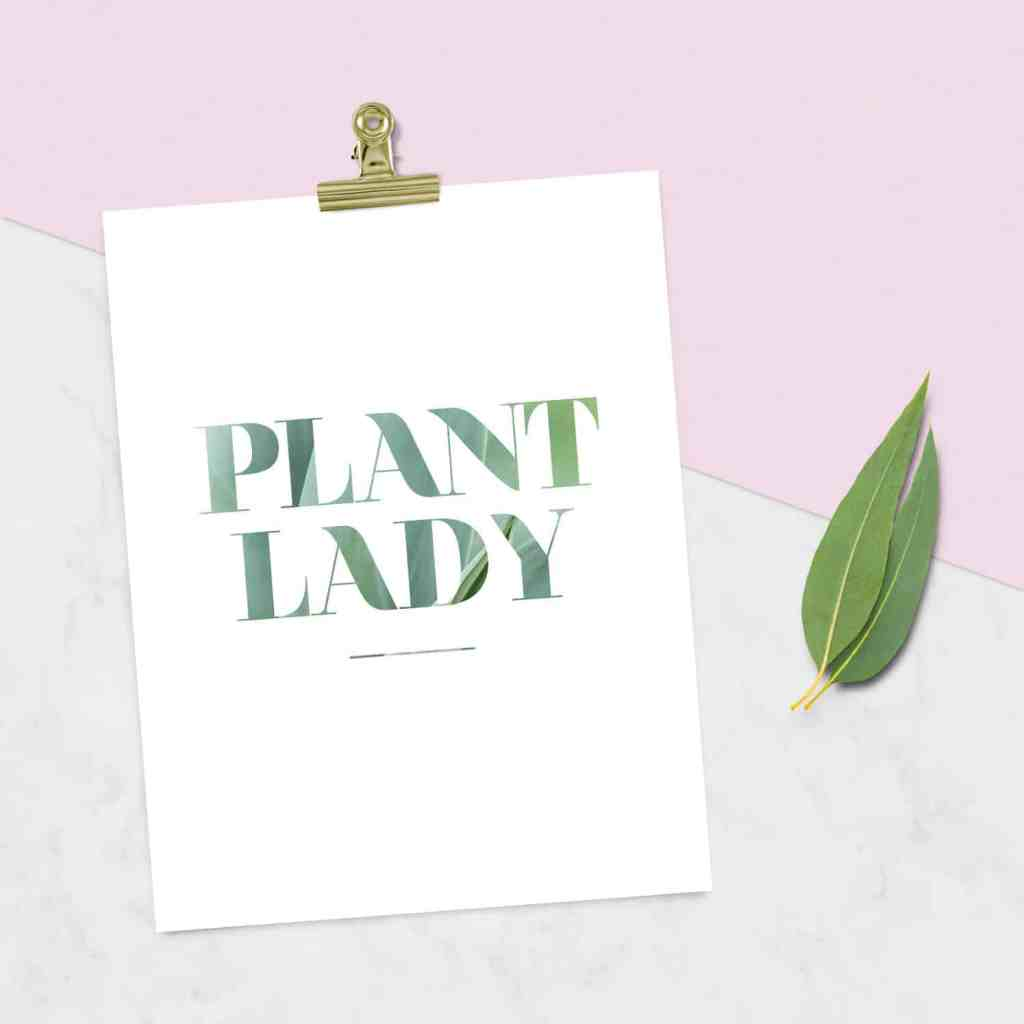 FREEBIE  //  PLANT LADY PRINTABLES