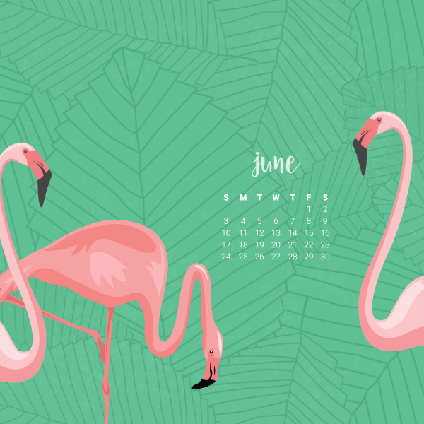 FREEBIES  //  JUNE DESKTOP CALENDAR WALLPAPERS