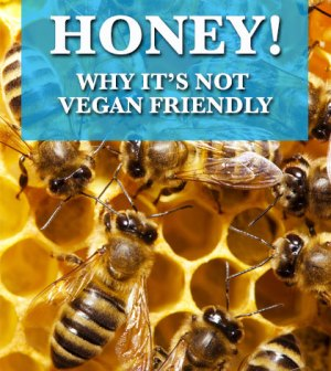 Why honey is not vegan friendly