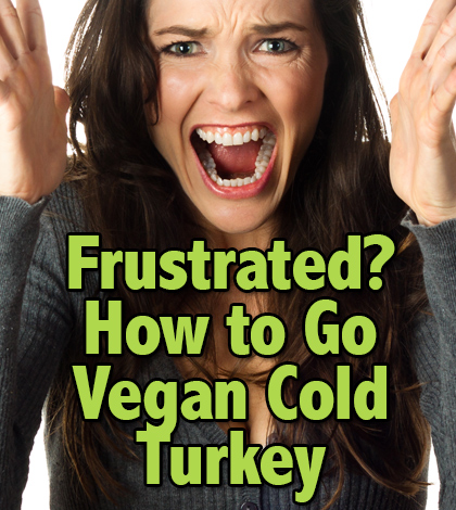 frustrated getting started vegan