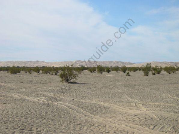 glamis_sand_dunes-054