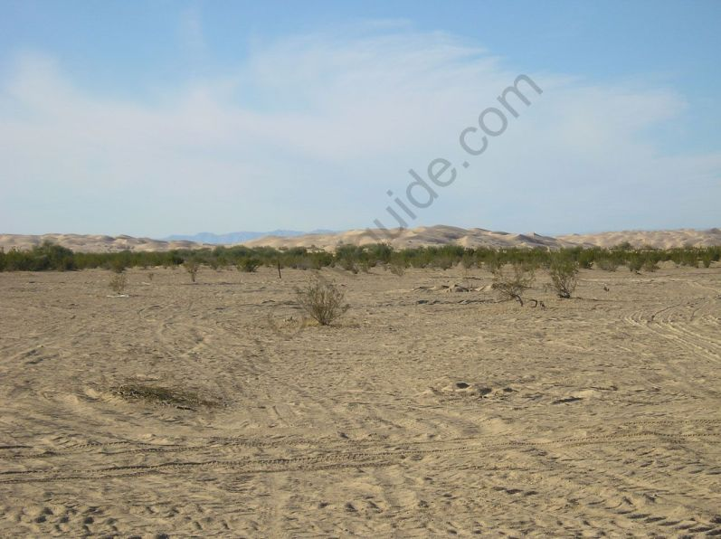 glamis_sand_dunes-070